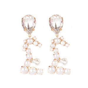 Pound earrings